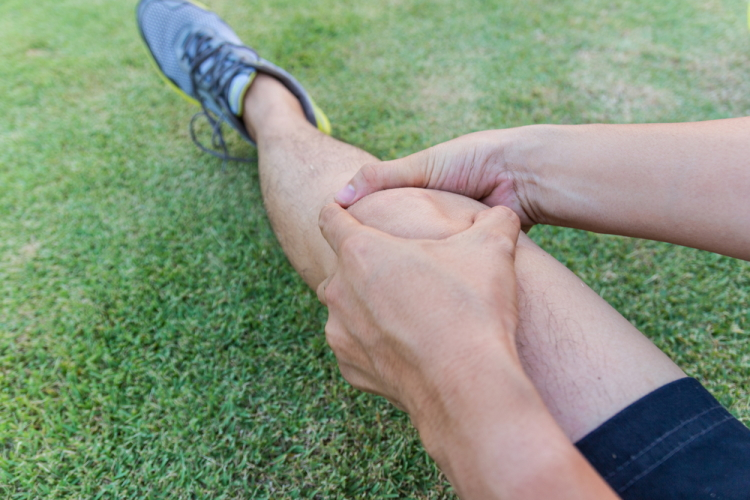 Tendon Knee Injury